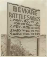 Beware of rattlesnakes! ... Sign at Pyote AAF