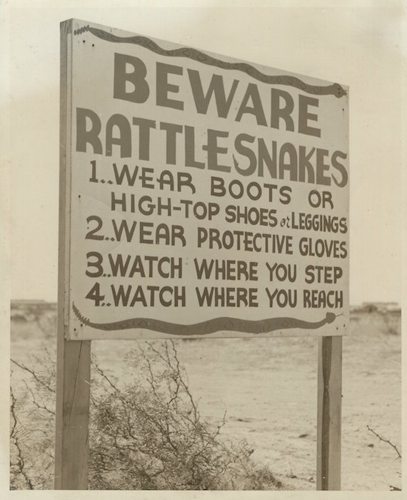 "BEWARE! Yes, there WERE ratlesnakes in Texas in the early 1940s, and lots of them around Pyote AAF. Thus, the nickname ... ""Rattlesnake Air Force Base"""